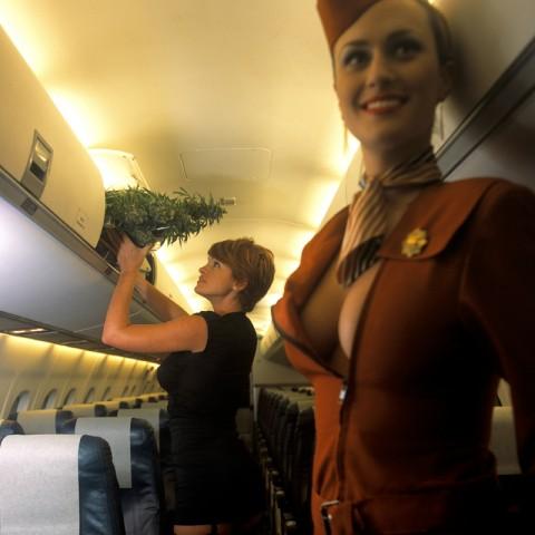 【衝撃】CAの機内でのおふざけエロ画像が流出・・・これはアウトwwwwwww(32枚)・31枚目