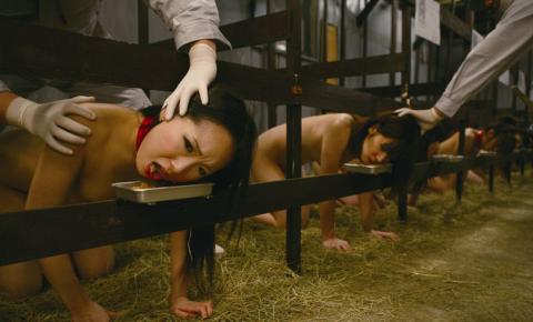 【※草不可避】もし女が家畜として扱われてる世界をご覧くださいwwwwwwwwwwwww(画像26枚)・2枚目