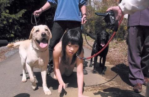 【 衝 撃 】 ウ チ の 雌 犬 ( 嫁 ) の 散 歩 風 景 を ご 覧 く だ さ い wwwwwwwwwwww・20枚目