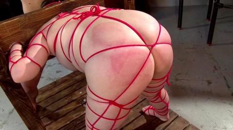 【※誰得!?】いっそ焼き豚にしてやりたくなるデブ女の緊縛画像wwwwwwwwwwwww(24枚)・3枚目