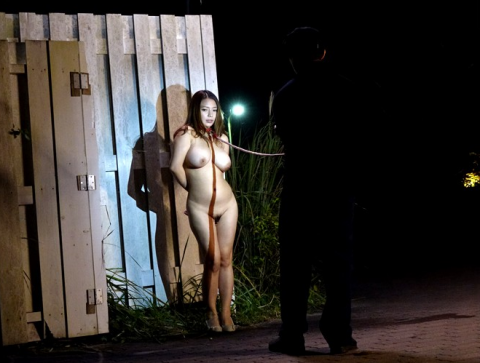 【納得】これが日本の露出狂だ。堂々としてるのはどうもイカン・・・(画像20枚)・21枚目