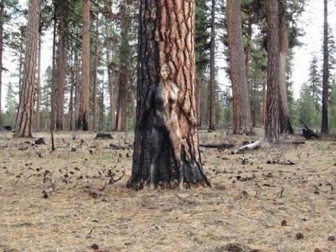 こちらの風景画像の中から裸の女の子を探してください(21枚)・18枚目