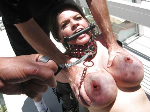 もはや人間扱いされてない拷問エロ画像(28枚)・1枚目