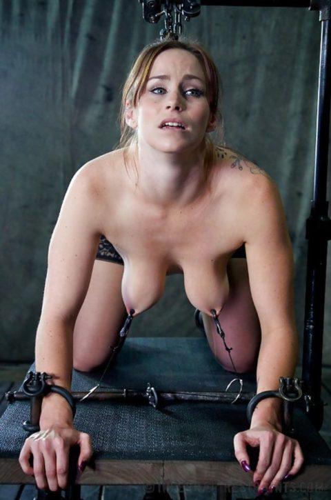 もはや人間扱いされてない拷問エロ画像(28枚)・12枚目