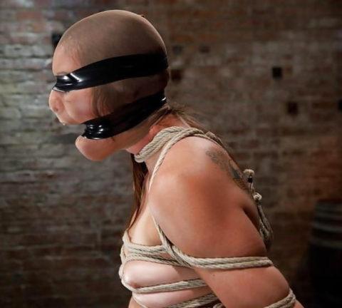 もはや人間扱いされてない拷問エロ画像(28枚)・20枚目