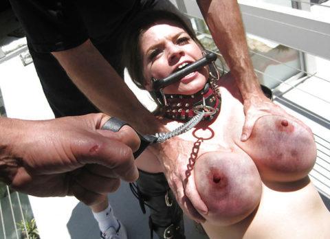 もはや人間扱いされてない拷問エロ画像(28枚)・23枚目