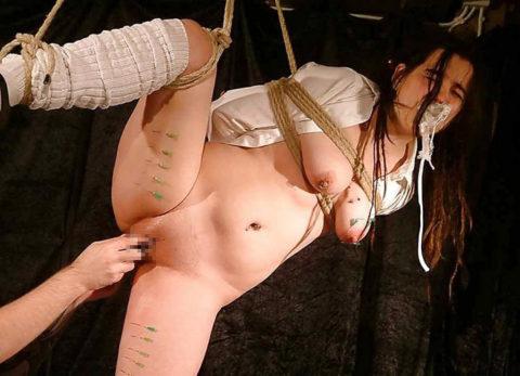 もはや人間扱いされてない拷問エロ画像(28枚)・3枚目