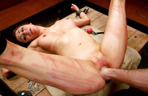 もはや人間扱いされてない拷問エロ画像(28枚)・8枚目