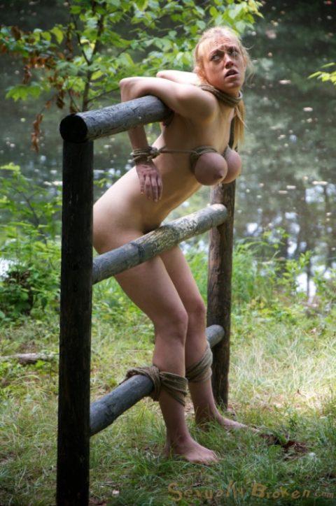 【画像20枚】野外調教用に飼われてる最下層女の扱いが悲惨すぎる・・・・・・・・・10枚目