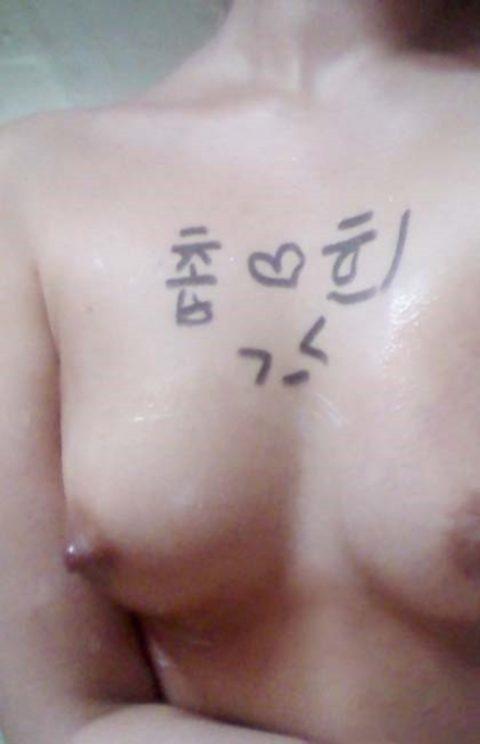 【韓国】ハングルで書かれた女体落書きエロ画像wwwwwwwww全く読めん・・・(26枚)・3枚目