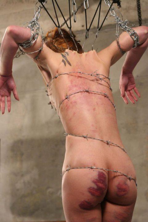 【流血注意】有刺鉄線を使ったエロ画像(※気の小さい人は見てはいけません)(20枚)・13枚目