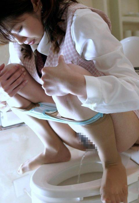 【画像あり】洋式トイレで一番えっろいオシッコの仕方wwwwwwwwwwwwwwwww・14枚目