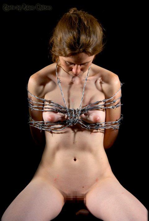 【流血注意】有刺鉄線を使ったエロ画像(※気の小さい人は見てはいけません)(20枚)・16枚目