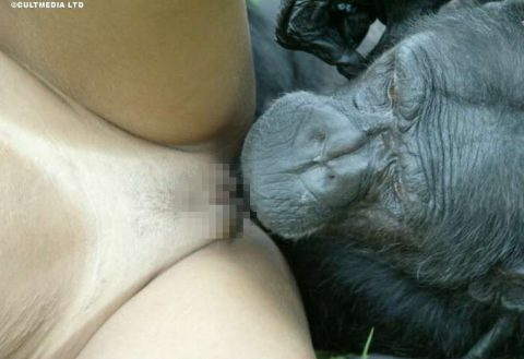 【ドン引き】猿と愛し合う女たち・・・(画像20枚)・11枚目
