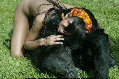 【ドン引き】猿と愛し合う女たち・・・(画像20枚)・13枚目