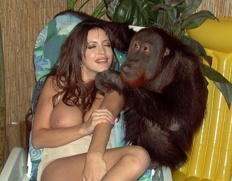With you Video girl sex with monkey will not