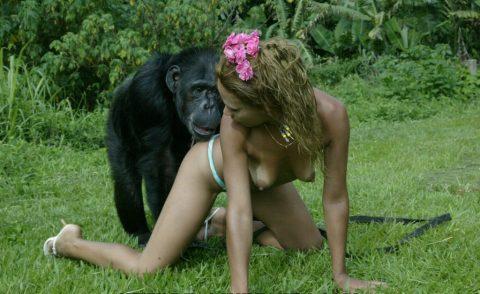 【ドン引き】猿と愛し合う女たち・・・(画像20枚)・5枚目