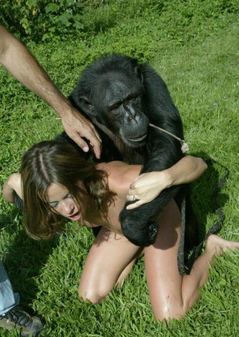 【ドン引き】猿と愛し合う女たち・・・(画像20枚)・7枚目