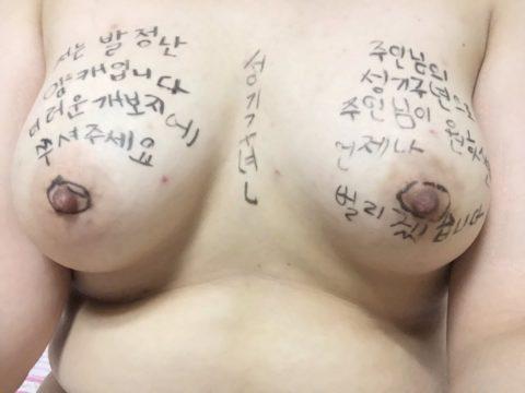 【韓国】ハングルで書かれた女体落書きエロ画像wwwwwwwww全く読めん・・・(26枚)・15枚目