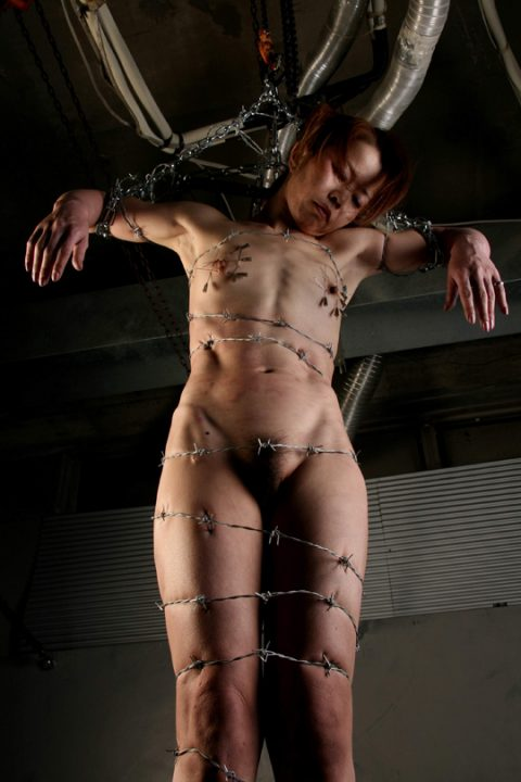 【流血注意】有刺鉄線を使ったエロ画像(※気の小さい人は見てはいけません)(20枚)・19枚目