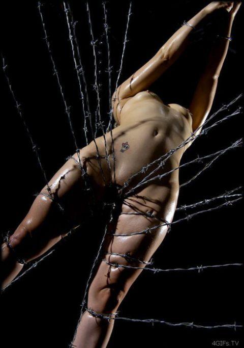 【流血注意】有刺鉄線を使ったエロ画像(※気の小さい人は見てはいけません)(20枚)・20枚目