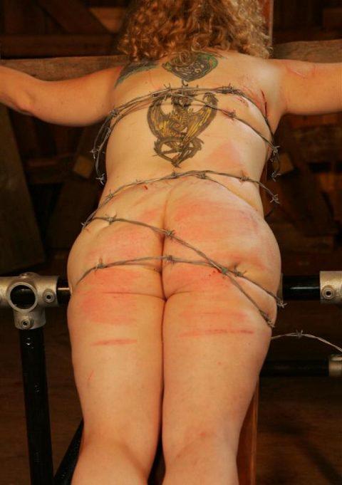 【流血注意】有刺鉄線を使ったエロ画像(※気の小さい人は見てはいけません)(20枚)・9枚目