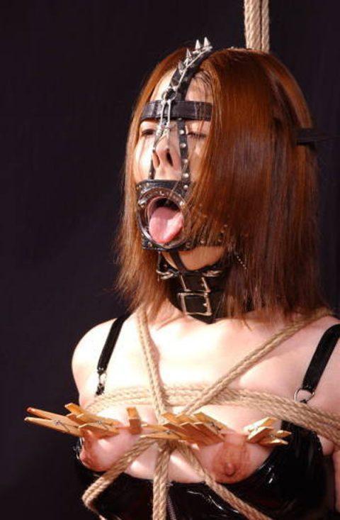 【画像あり】どんな美人も無様なブサイクにできる鼻フックが有能すぎる件wwwwwwwwwwwww・14枚目