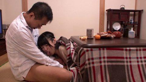 【画像24枚】コタツフェラとかいう冬の日本のカップル風物詩wwwwwwwwwwwwww・4枚目