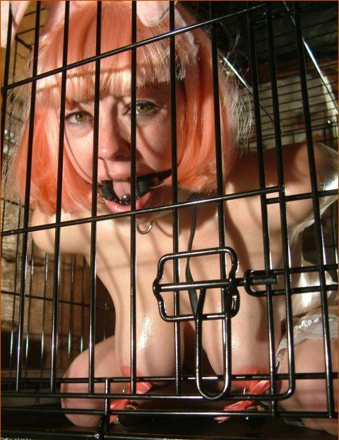 【画像27枚】出荷前のメス奴隷たちをご覧くださいwwwwwwwwwwwwww・11枚目