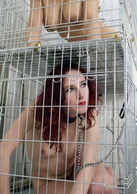 【画像27枚】出荷前のメス奴隷たちをご覧くださいwwwwwwwwwwwwww・21枚目