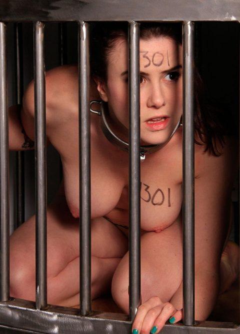 【画像27枚】出荷前のメス奴隷たちをご覧くださいwwwwwwwwwwwwww・22枚目