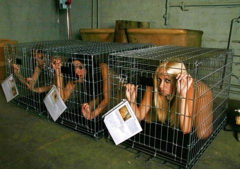 【画像27枚】出荷前のメス奴隷たちをご覧くださいwwwwwwwwwwwwww・26枚目