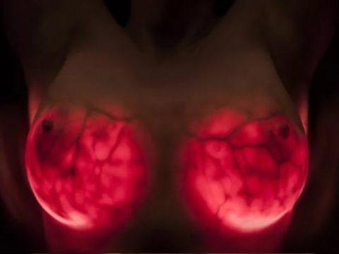 【画像23枚】偽乳を一発で見分けるライト有能すぎwwwwwwwwwwww・1枚目