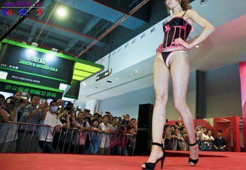 【驚愕】中国の下着ファッションショー、意図的にハミマンしてるとしか・・・(画像24枚)・1枚目