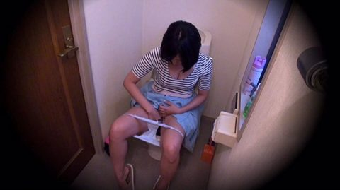 【画像あり】年頃の娘がトイレからなかなか出てこない理由wwwwwwwwwwwwww