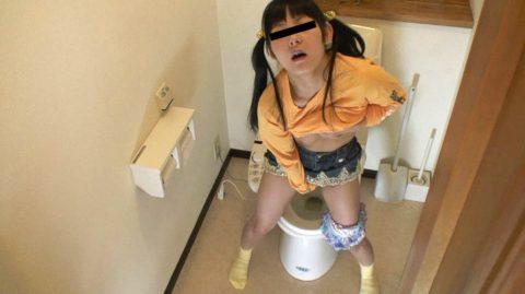 【画像あり】年頃の娘がトイレからなかなか出てこない理由wwwwwwwwwwwwww・2枚目