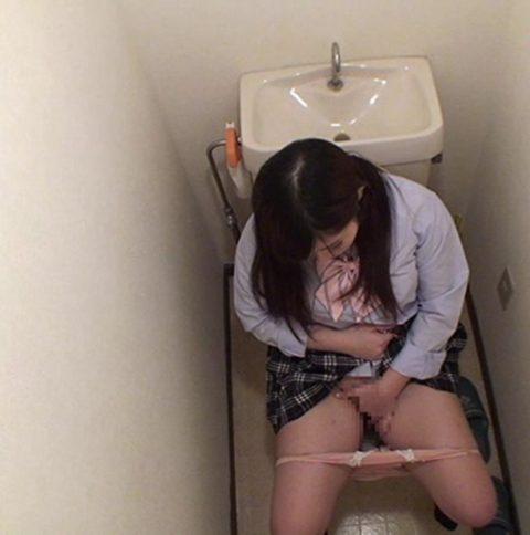 【画像あり】年頃の娘がトイレからなかなか出てこない理由wwwwwwwwwwwwww・24枚目