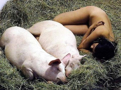 【画像】ガチ中のガチのメス豚をご覧くださいwwwwwwwwwwwwwwwww・1枚目