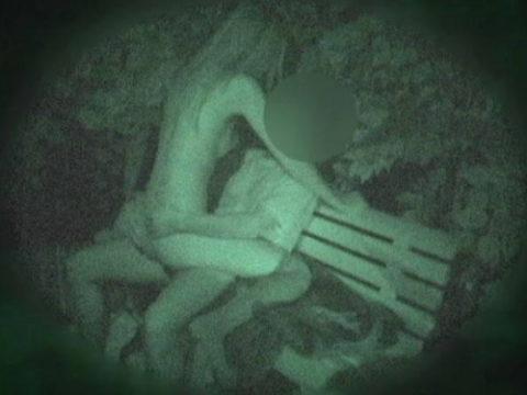 【衝撃画像】夜の公園内を赤外線カメラで撮ってみた結果・・・(画像24枚)・1枚目
