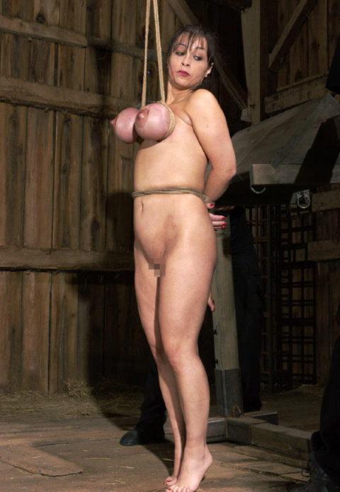 【残酷過ぎ】乳だけで女を吊ってみた結果wwwwwwwwwwwwwwwwww(画像24枚)・10枚目