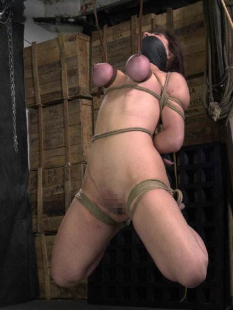 【残酷過ぎ】乳だけで女を吊ってみた結果wwwwwwwwwwwwwwwwww(画像24枚)・12枚目
