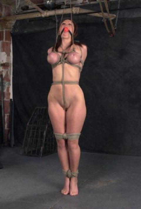 【残酷過ぎ】乳だけで女を吊ってみた結果wwwwwwwwwwwwwwwwww(画像24枚)・2枚目