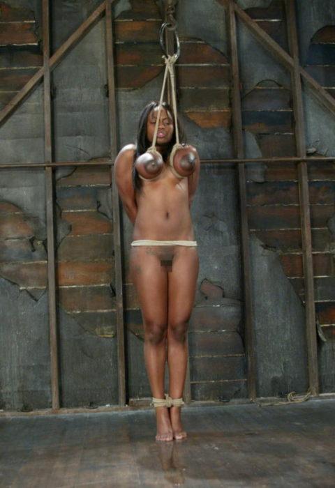 【残酷過ぎ】乳だけで女を吊ってみた結果wwwwwwwwwwwwwwwwww(画像24枚)・8枚目
