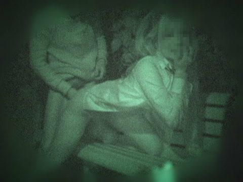 【衝撃画像】夜の公園内を赤外線カメラで撮ってみた結果・・・(画像24枚)・19枚目