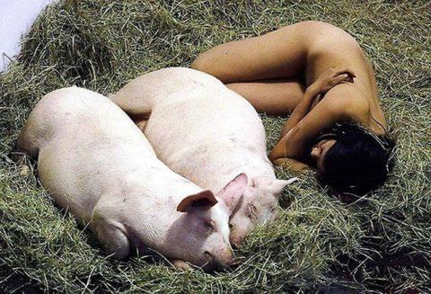 【画像】ガチ中のガチのメス豚をご覧くださいwwwwwwwwwwwwwwwww・29枚目