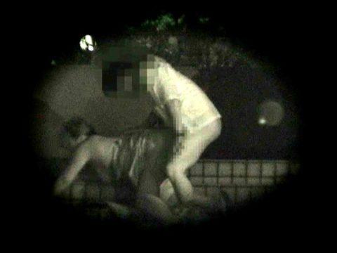 【衝撃画像】夜の公園内を赤外線カメラで撮ってみた結果・・・(画像24枚)・5枚目