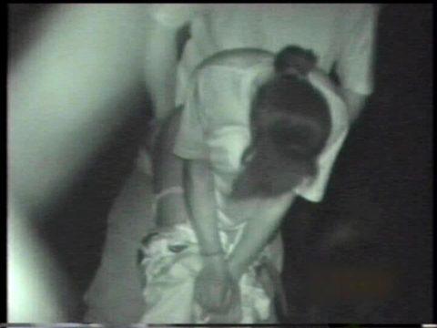 【衝撃画像】夜の公園内を赤外線カメラで撮ってみた結果・・・(画像24枚)・7枚目