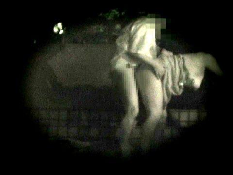 【衝撃画像】夜の公園内を赤外線カメラで撮ってみた結果・・・(画像24枚)・9枚目
