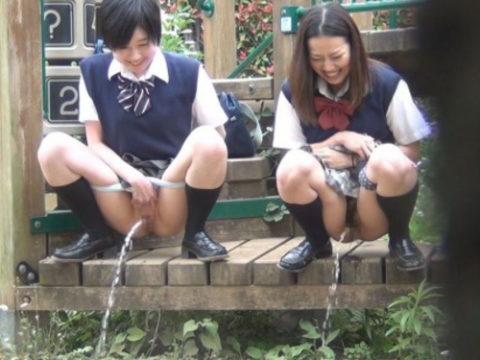 【野外放尿】JKのストレス発散方法がこちらwwwwwwwwwww(画像30枚)