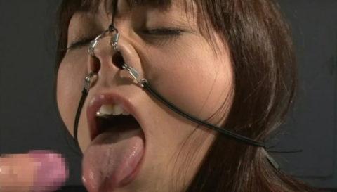 鼻フックとかいう驚異のブス製造器具wwwwwwwwwwwwww(画像30枚)・18枚目